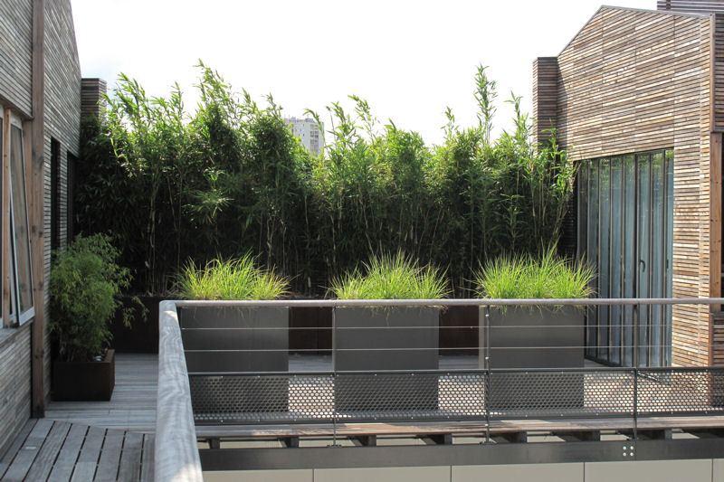 cacher-le-vis-a-vis-une-haie-de-bambous