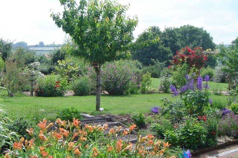 Quels arbres planter dans son jardin et pourquoi - Que planter dans son jardin ...